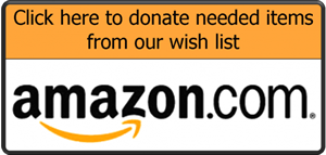 amazon wishlist button 600x285